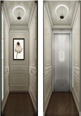 别墅电梯(欧式风格)